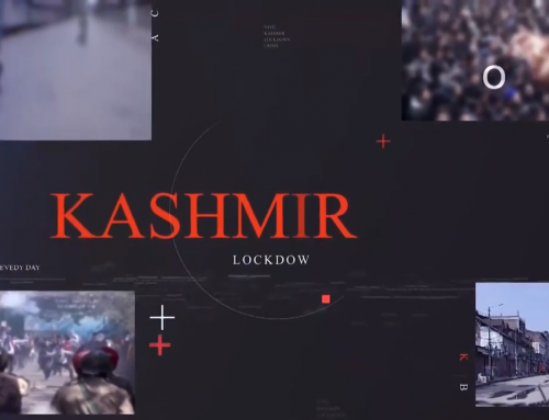 Kashmir will be Pak or not | Official statement by Pakistani Diplomat Dr. Muhammad Faisal